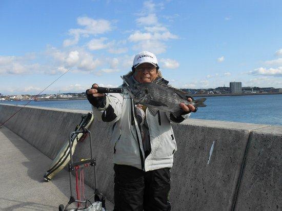 2019年01月10日(木曜日)|クロダイ・チヌ(フカセ釣り)|愛知県 – 常滑市 常滑港|ウキフカセ|フィールドテスター中村 輝夫